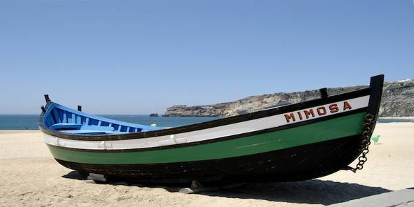 Typical fishing boat in Nazare